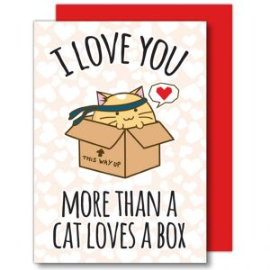 i-love-you-more-than-a-cat-card